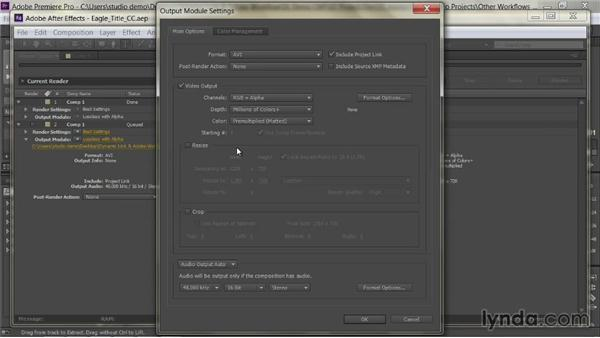 Including project links: Premiere Pro Guru: Dynamic Link and the Adobe Workflow