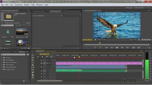 Importing a layered Photoshop file: Premiere Pro Guru: Dynamic Link and the Adobe Workflow