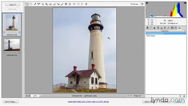 Working with archival Camera Raw images: Photoshop CC 2013 One-on-One: Advanced
