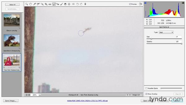 Retouching with the Spot Removal tool: Photoshop CC 2013 One-on-One: Advanced