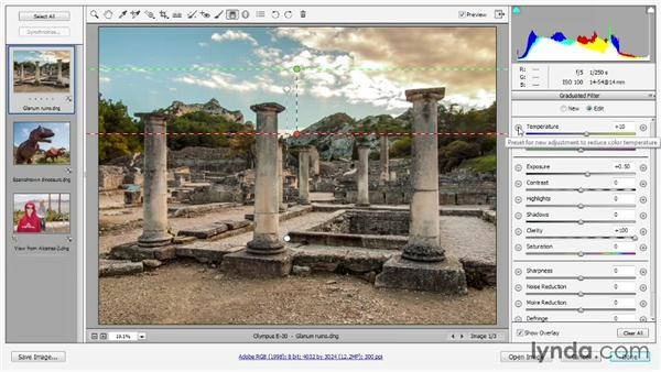 Using the Graduated Filter tool: Photoshop CC 2013 One-on-One: Advanced