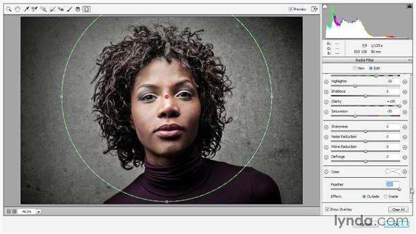 The Camera Raw filter and Radial Filter tool: Photoshop CC 2013 One-on-One: Advanced