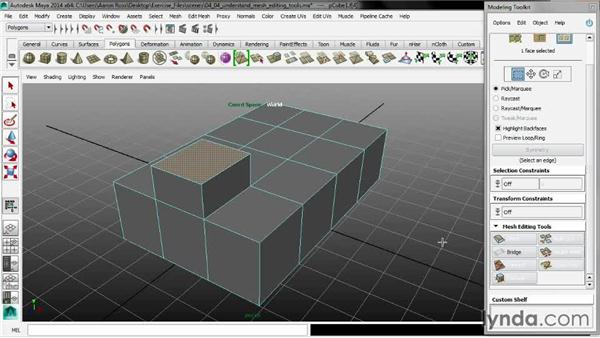 Understanding mesh editing tools: Maya 2014 New Features