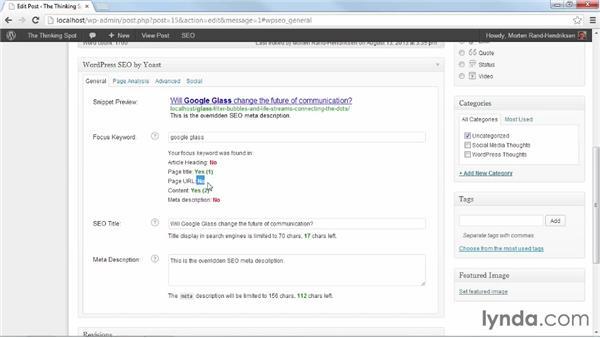 Using Focus Keyword and Page Analysis: WordPress Plugins: SEO (2013)