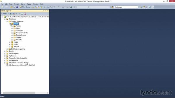 SQL Server securables: Securing SQL Server 2012