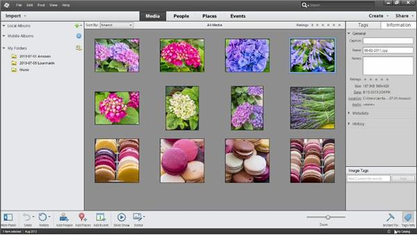 Making a catalog for the exercise files: Up and Running with Photoshop Elements 12