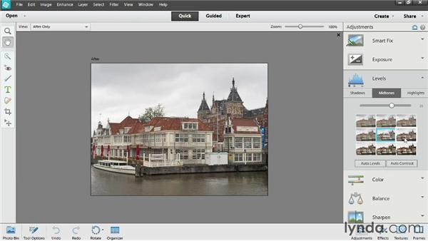 Making quick edits to lighting: Up and Running with Photoshop Elements 12