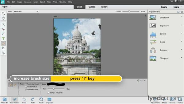 Retouching in Quick Edit: Up and Running with Photoshop Elements 12