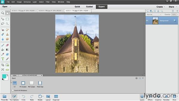 Overview of the Expert Edit workspace: Up and Running with Photoshop Elements 12