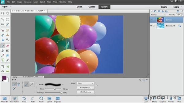 Introducing selections: Up and Running with Photoshop Elements 12