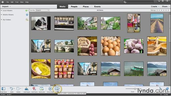 Overview of the Organizer: Up and Running with Photoshop Elements 12