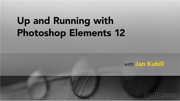 Goodbye: Up and Running with Photoshop Elements 12