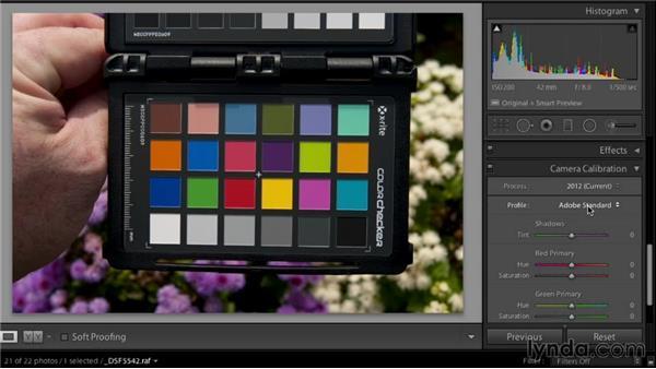 Exploring the benefits of custom camera profiles: Color Management Fundamentals