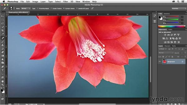 How to use springloaded shortcuts in Photoshop: Creative Quick Tips