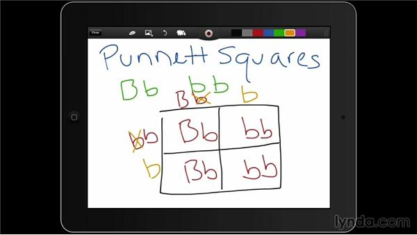 ShowMe: iPad Classroom: Apps for Educators