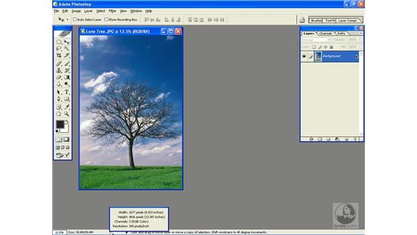 status bar tricks: Photoshop CS Power Shortcuts