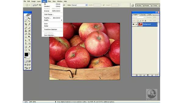 transform selections: Photoshop CS Power Shortcuts