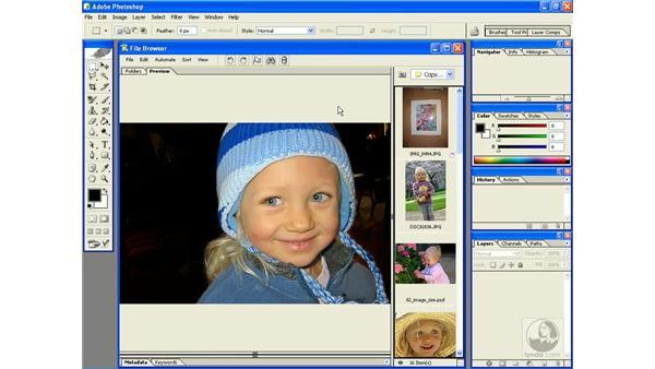 file browser shortcuts: Photoshop CS Power Shortcuts
