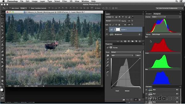 Identifying the tools and approach: Photoshop Color Correction: Low Contrast