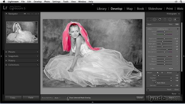Enhancing the veil: Enhancing a Black-and-White Wedding Photo with Lightroom