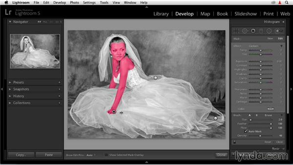 Softening skin tones: Enhancing a Black-and-White Wedding Photo with Lightroom