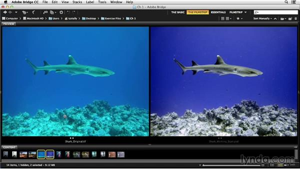 What is color correction?: Photoshop Color Correction: Fundamentals
