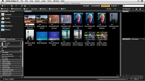 Working with Bridge for image management: Photoshop Color Correction: Fundamentals