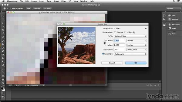 Understanding pixels as the building blocks of an image: Photoshop Color Correction: Fundamentals