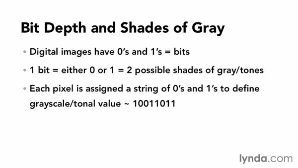 Understanding bit depth and grayscale: Photoshop Color Correction: Fundamentals