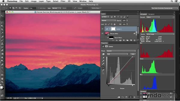 Navigating in an image: Photoshop Color Correction: Fundamentals