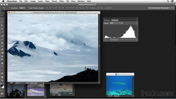 Using histograms: Photoshop Color Correction: Fundamentals