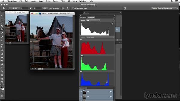 Evaluating the image: Photoshop Color Correction: Fundamentals