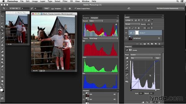 Performing curves adjustments: Photoshop Color Correction: Fundamentals