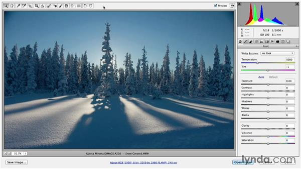 Getting started in the Camera Raw interface: Photoshop Color Correction: Fundamentals