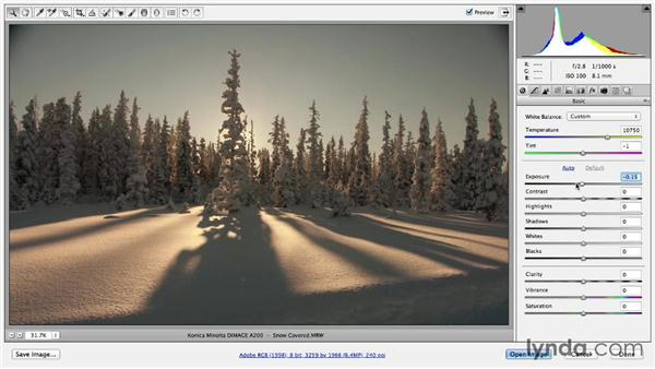 Making temperature adjustments in Camera Raw: Photoshop Color Correction: Fundamentals
