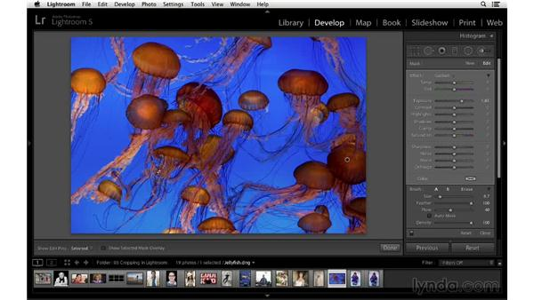 Crop, transform, and flip a photograph: Cropping with Photoshop and Lightroom