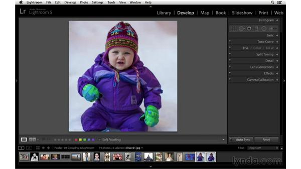 Synchronize the crop across multiple files: Cropping with Photoshop and Lightroom