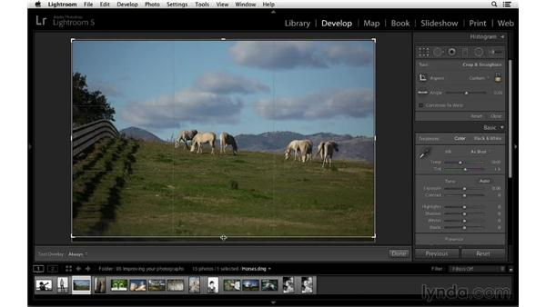 Finding pictures within pictures with a landscape: Cropping with Photoshop and Lightroom