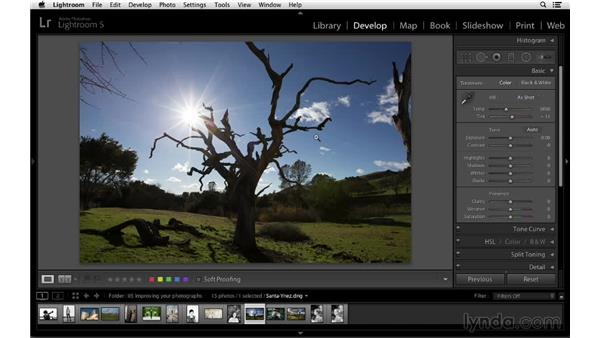 Get close by cropping: Cropping with Photoshop and Lightroom