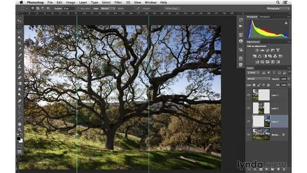 Creating a triptych from one photo: Cropping with Photoshop and Lightroom