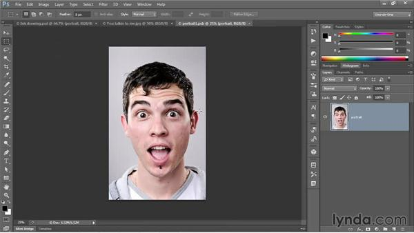 Duplicating a complex Smart Filter sequence: Photoshop CC One-on-One: Mastery