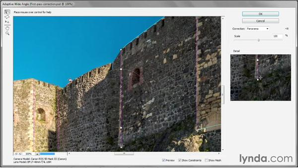 Aligning constraints and overcorrecting: Photoshop CC One-on-One: Mastery