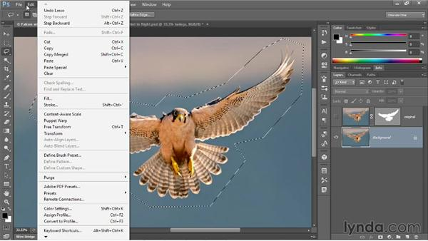 Extracting a foreground from a background: Photoshop CC One-on-One: Mastery