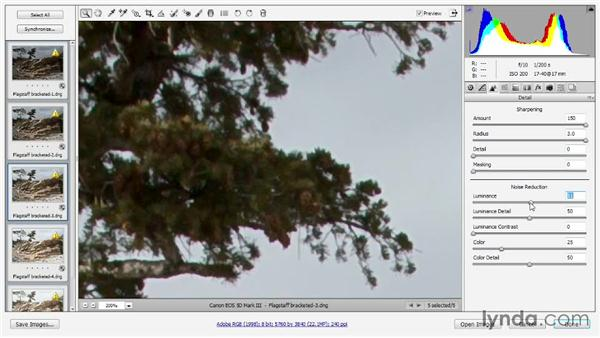 Preparing bracketed photos in Camera Raw: Photoshop CC One-on-One: Mastery