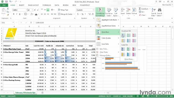 Using data bars: Data-Driven Presentations with Excel and PowerPoint