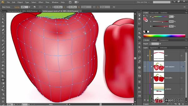 Adding and deleting lines with the Mesh tool: Illustrator CC 2013 One-on-One: Mastery