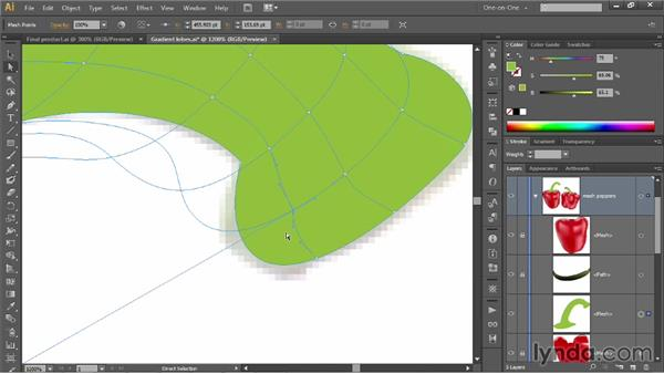 Working with slender, bending shapes: Illustrator CC 2013 One-on-One: Mastery