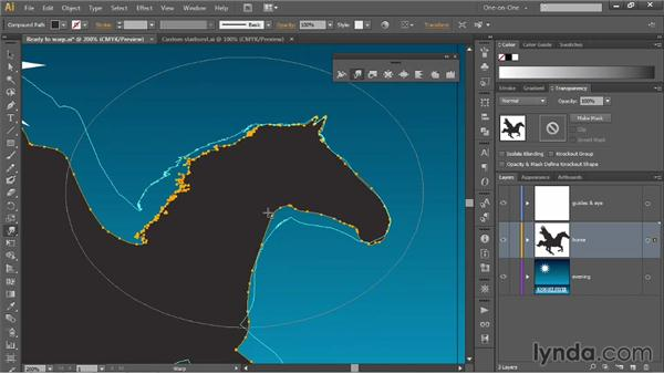 Brush size, Detail, and Simplify: Illustrator CC 2013 One-on-One: Mastery