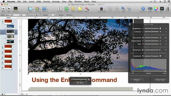 Using the Enhance command: Keynote: Using Photos and Videos Effectively for Great Presentations