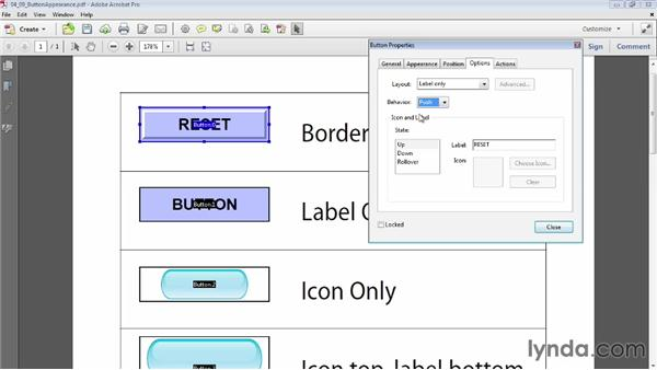 Button appearance: Acrobat XI: Creating Forms